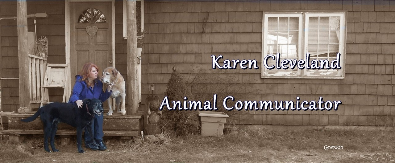 Karen Cleveland Animal Communicator With Buddy and Jack