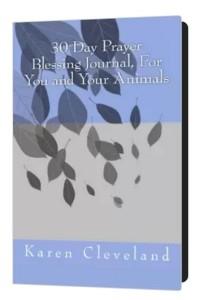 Prayer Blessings Book