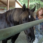 karenclevelandandtheanimals animal communication classes
